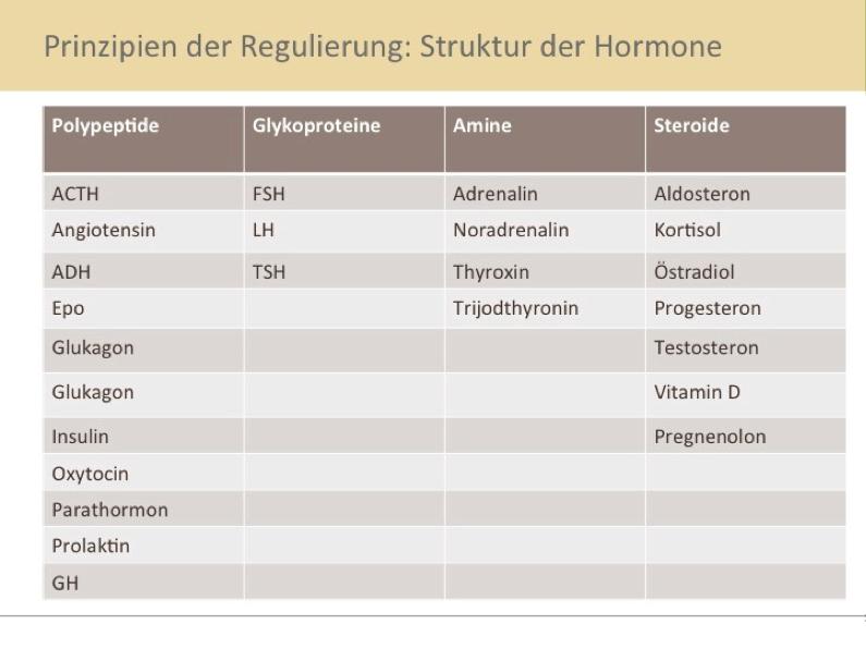 struktur-hormone